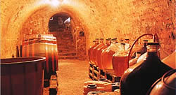 Traditional Moravian wine cellar